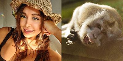 Streamer đau đớn bật khóc khi bị khỉ tấn công tại vườn thú Bali