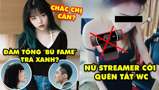 Stream Biz #44: Linh Ngọc Đàm phản pháo khi bị nói bú fame Trà Xanh, Nữ streamer thay đồ quên tắt WC
